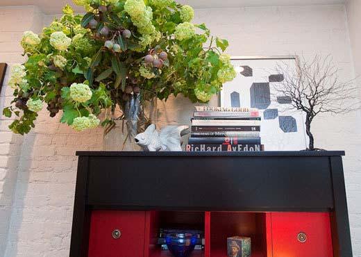 盆栽葡萄树欣赏图片