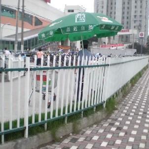 宁波野生动物园翻围墙
