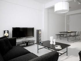 大气黑白 高富帅简约风单身公寓