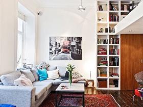 丰富不凌乱 经济型简约小公寓