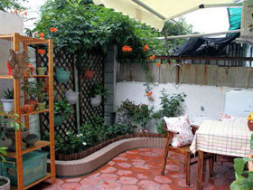 夏日好乘凉 11个清凉小花园