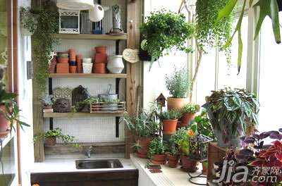 【分享】老房里的春天 diy花园小阳台图片