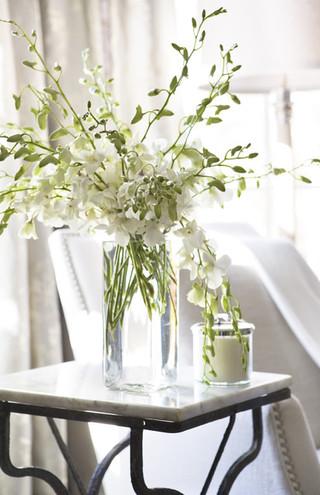 美式风格2014年别墅小清新室内植物图片