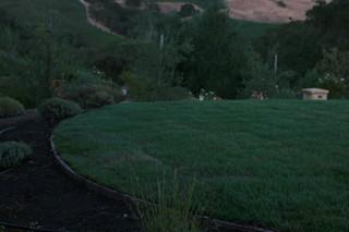 葡萄庄园 简约大气的庭院