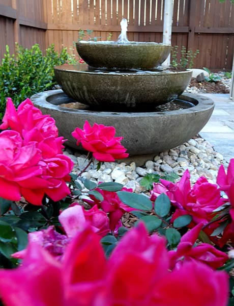 简约风格别墅花园设计  简单的美