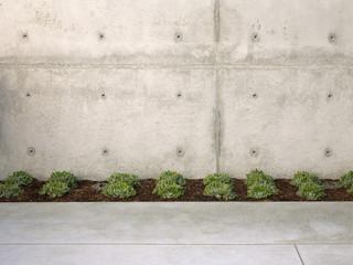 朴实无华的庭院设计