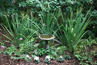 花园设计攻略 夏日尽享绿色自然风