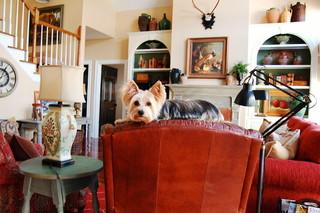 法式风格3层别墅浪漫婚房布置功能沙发效果图