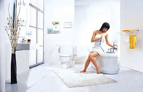 2016整体卫浴品牌排行