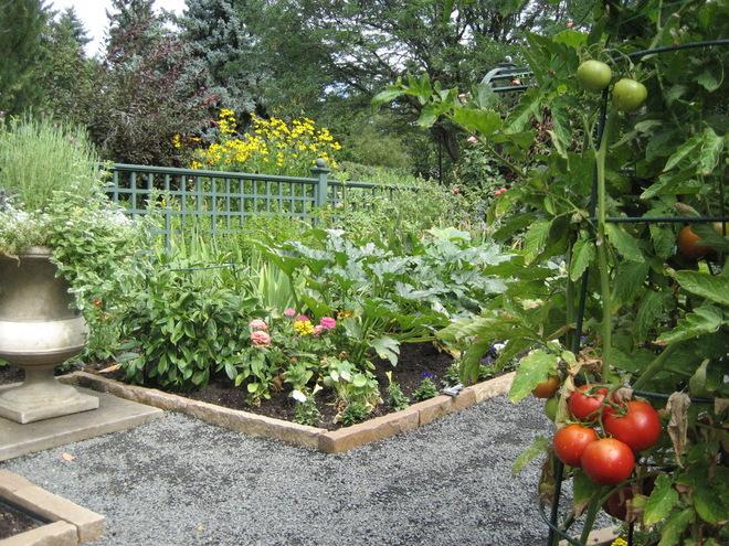 你认得出自家花园的每一种花卉吗