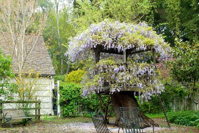 花园设计 打造托斯卡纳风格庭院