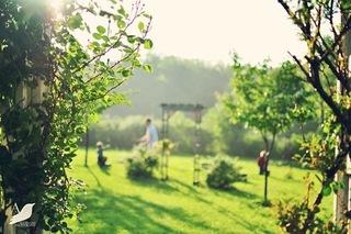 花园装饰 走进诗情画意般的梦幻世界