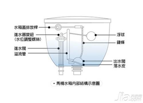 马桶内部结构图 充气钢珠汽枪结构图 洋葱表皮细胞结构图
