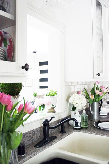 厨房清新家居绿植