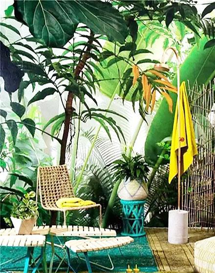 热带雨林风格花园设计