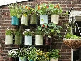 11个DIY绿植盆栽 迷你花园造出来
