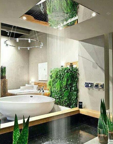 创意绿植挤进卫浴间