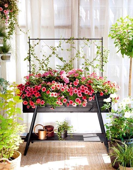 阳台花园演绎空中美景