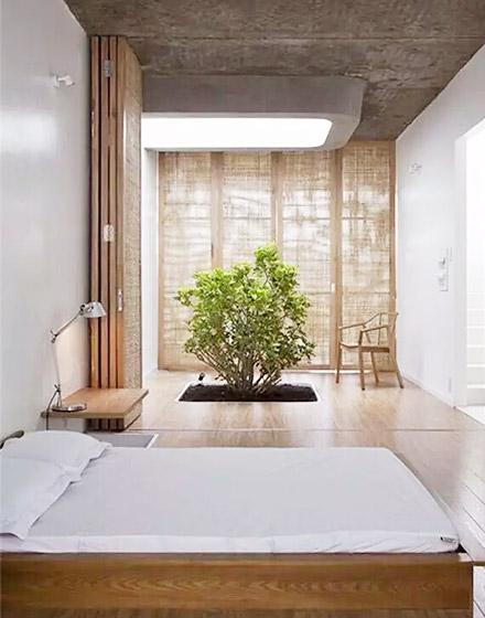 雅致卧室室内庭院装修