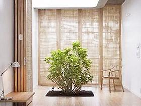 庭院深深 12个别墅室内庭院装修效果图