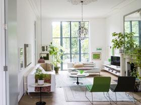 家不能无绿植  绿色装扮让你的家充满生机