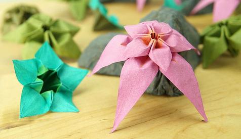 今天小编就教大家手工折纸玫瑰,四叶草,康乃馨,太阳花的折法.图片