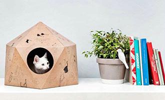 看完疯狂动物城,是否想过为您的宠物安个家?