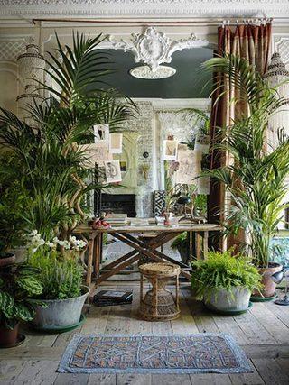 室内花园景观设计布置图片