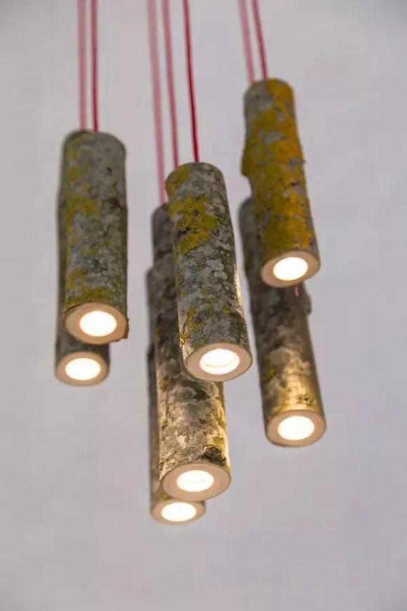 独特的树木圆筒灯仿佛一个精致的手电筒,非常漂亮.