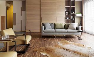 简约风格两房客厅效果图