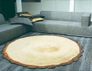 客厅地毯摆放平面图