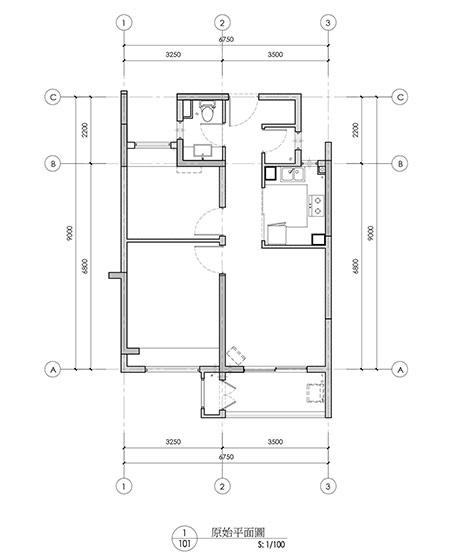 两居平面图10x10米