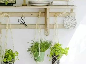绿植爬上墙 打造清新田园家