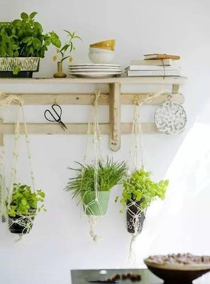 植物背景墙设计效果图