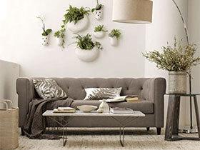 清新怡人  10个室内植物摆放设计图