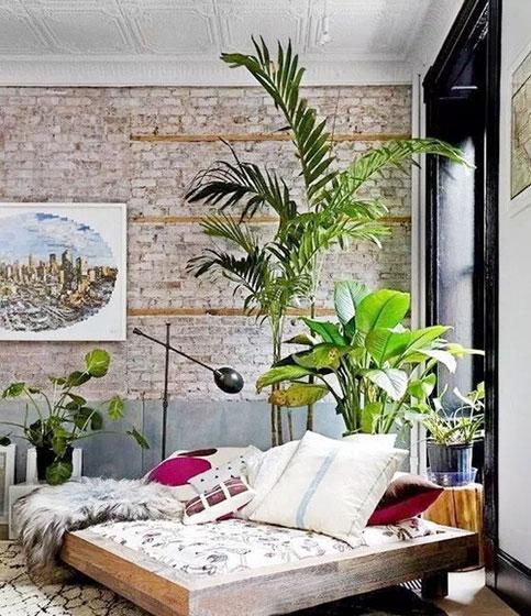 室内植物装饰设计平面图