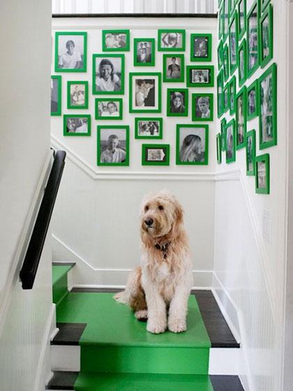 室内照片墙装修效果图