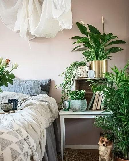卧室床头柜植物装饰设计图