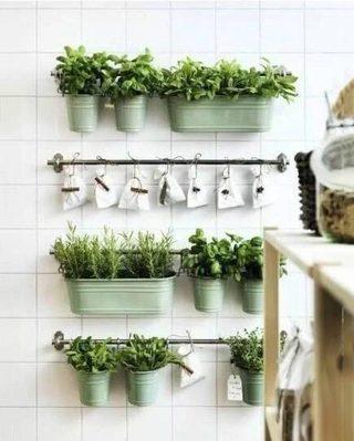 室内植物背景墙设计图片