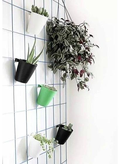 植物挂件装修装饰图