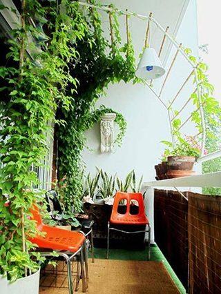阳台植物布置图