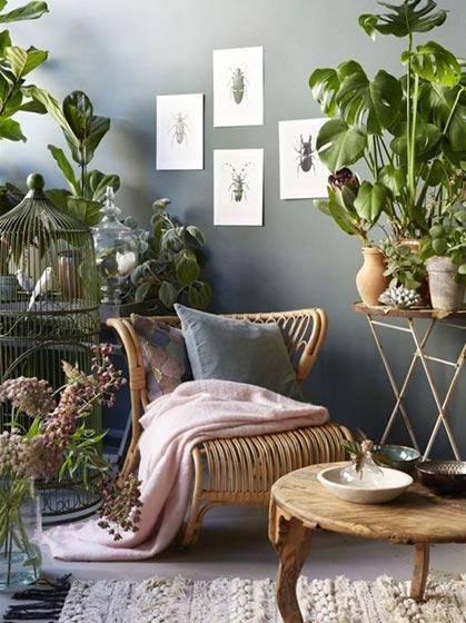 卧室室内植物效果图