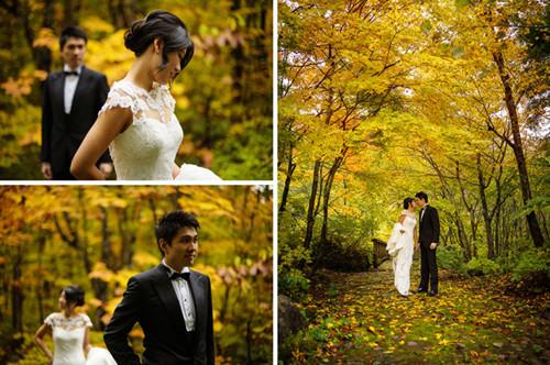 壁纸 风景 婚纱 婚纱照 森林 桌面 500_332