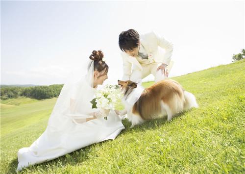 拍婚纱照大概多少钱_情侣婚纱照多少钱 情侣婚纱照怎么选情侣装