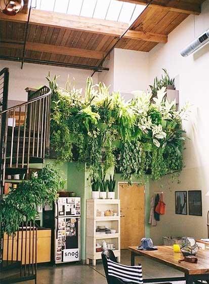 室内植物摆件装修装饰效果图