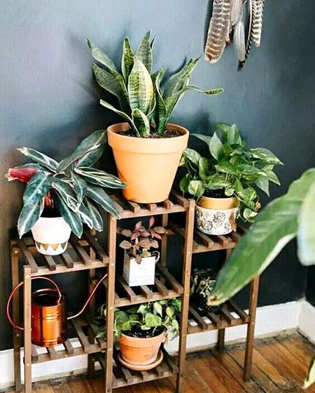 阳台植物置物架效果图