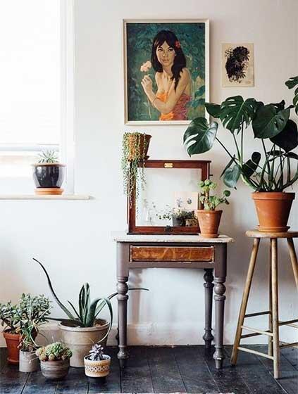 室内植物摆件设计欣赏图