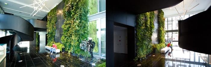 立体绿化案例
