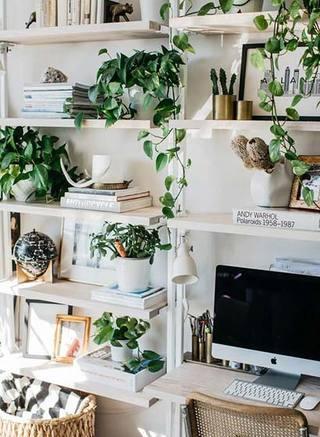 室内植物摆放装修平面图