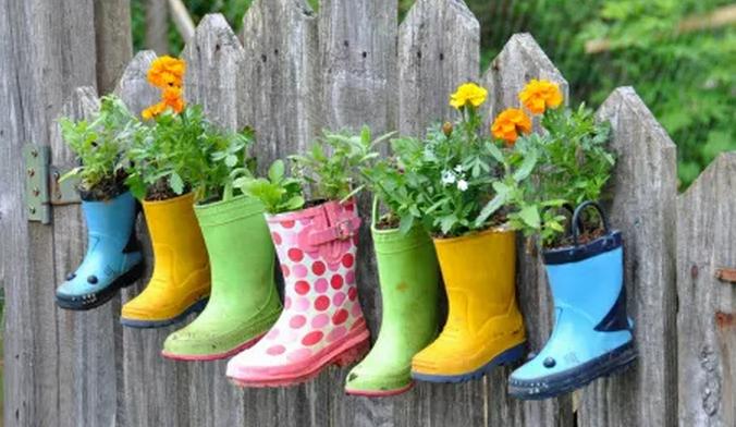 创意DIY盆栽,发现不一样的美图片